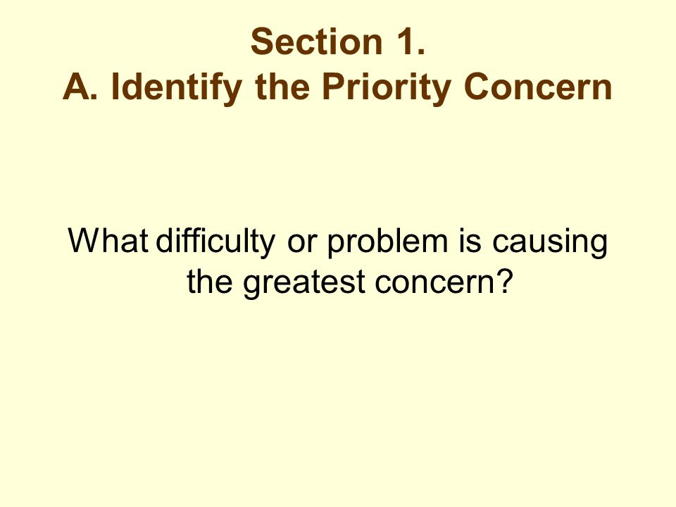 Section 1. A. Identify the Priority Concern