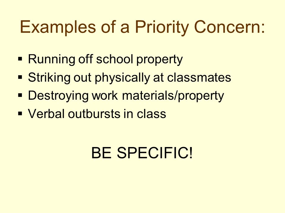 Examples of a Priority Concern: