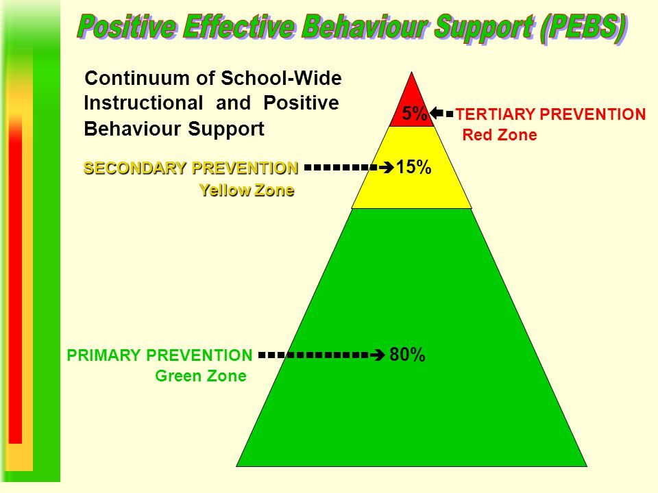 Positive Effective Behaviour Support (PEBS)