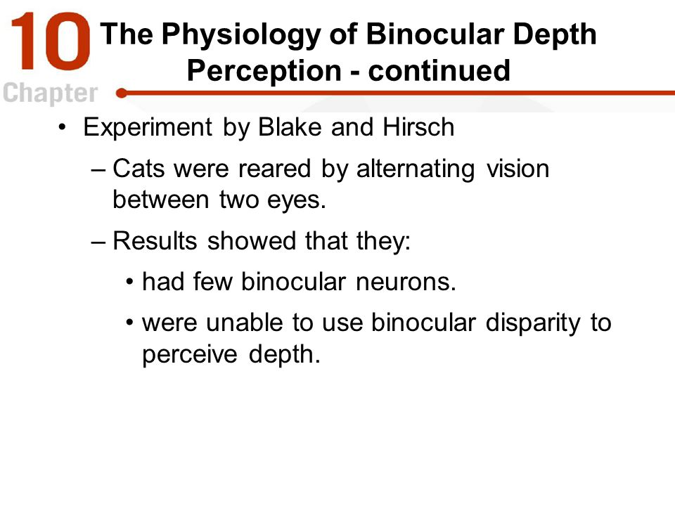 The Physiology of Binocular Depth Perception - continued