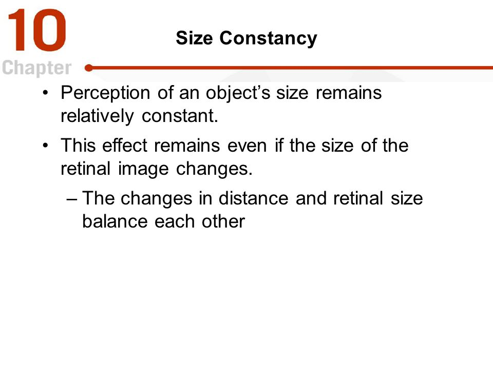 Perception of an object's size remains relatively constant.
