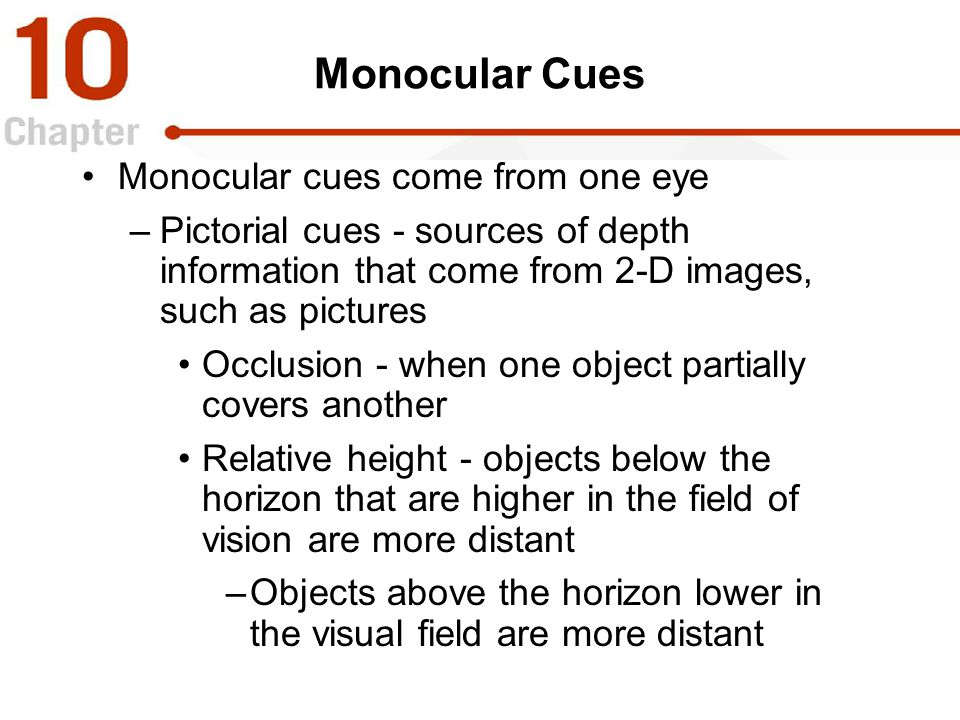 Monocular Cues Monocular cues come from one eye