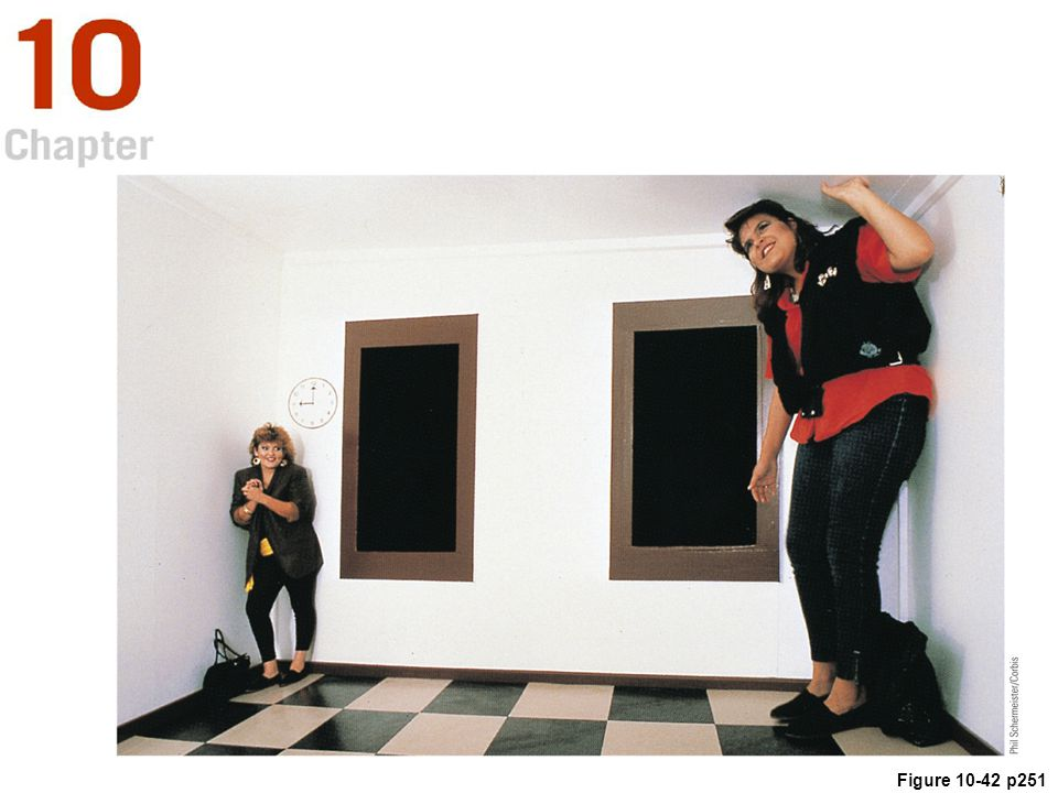 Figure 10.42 The Ames room. Both women are actually the same height, but the woman on the right appears taller because of the distorted shape of the room. (The Exploratorium/S. Schwartzenberg.)