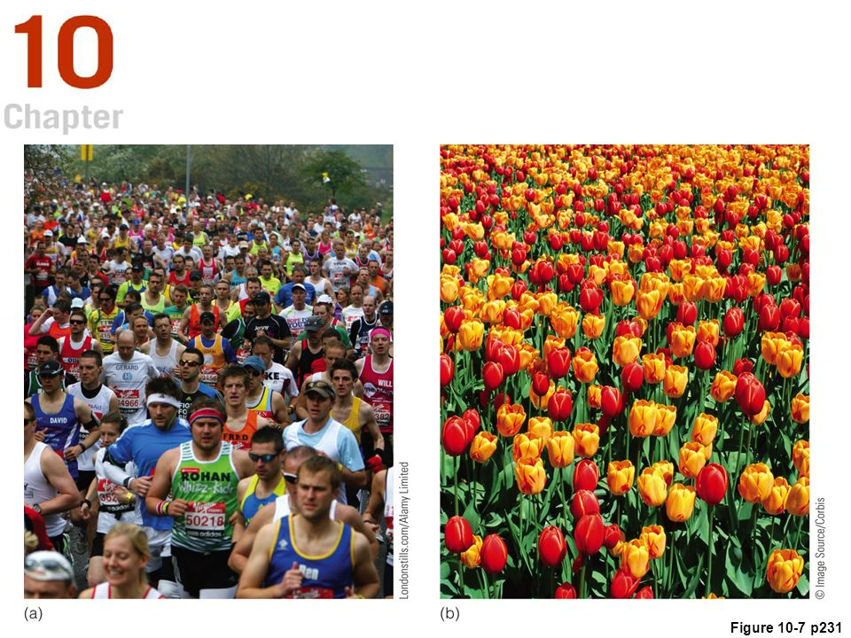 Figure 10. 7 Texture gradients created by marathon runners and flowers