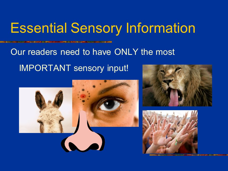 Essential Sensory Information