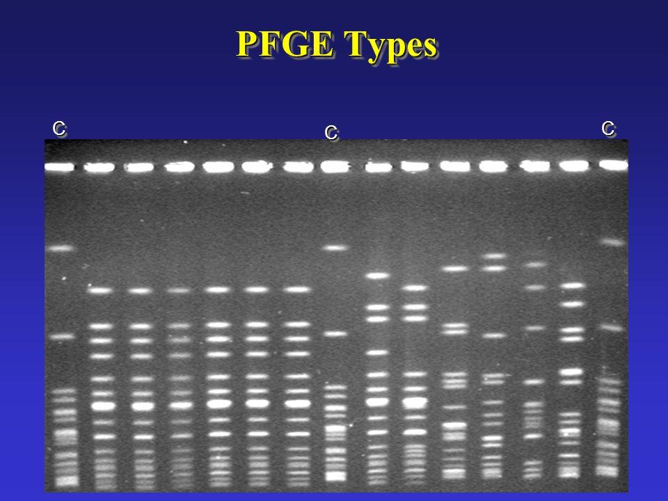 PFGE Types C C C