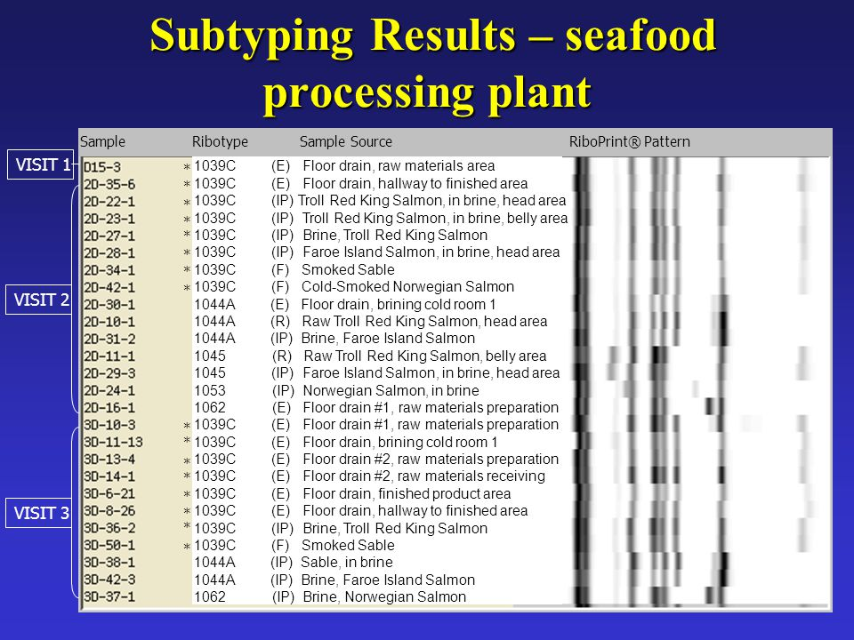 Subtyping Results – seafood processing plant