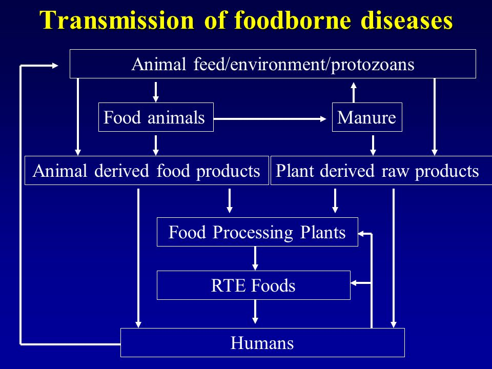Transmission of foodborne diseases