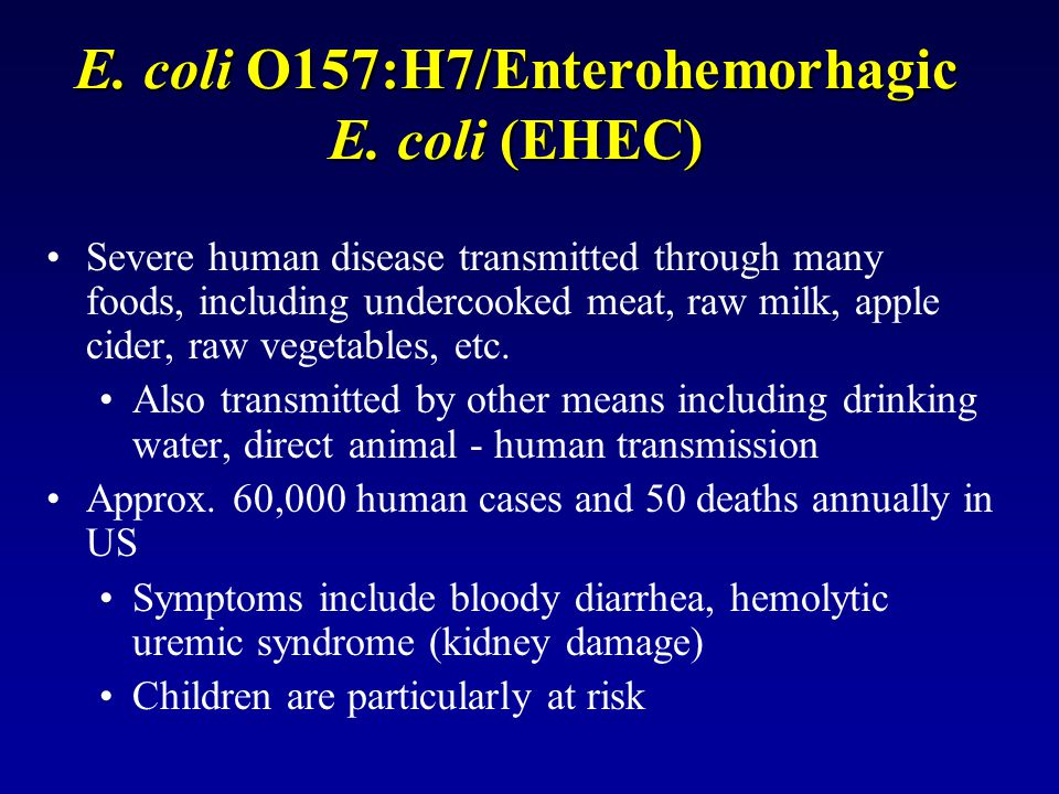 E. coli O157:H7/Enterohemorhagic E. coli (EHEC)