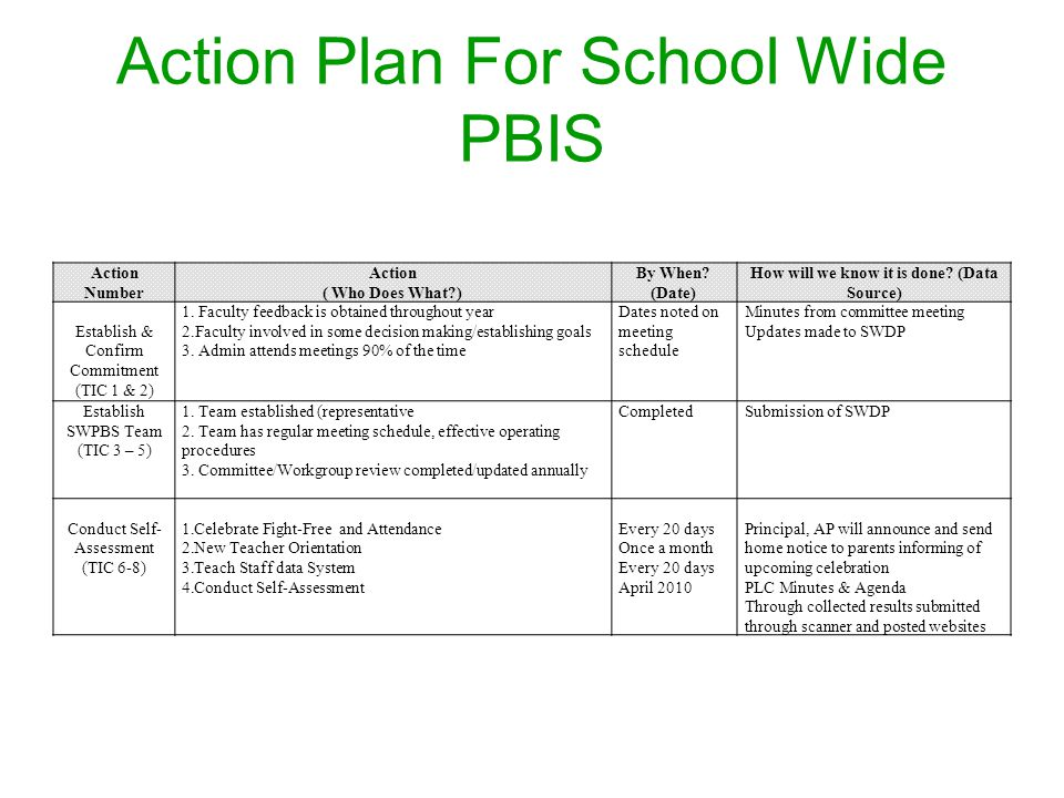 Action Plan For School Wide PBIS