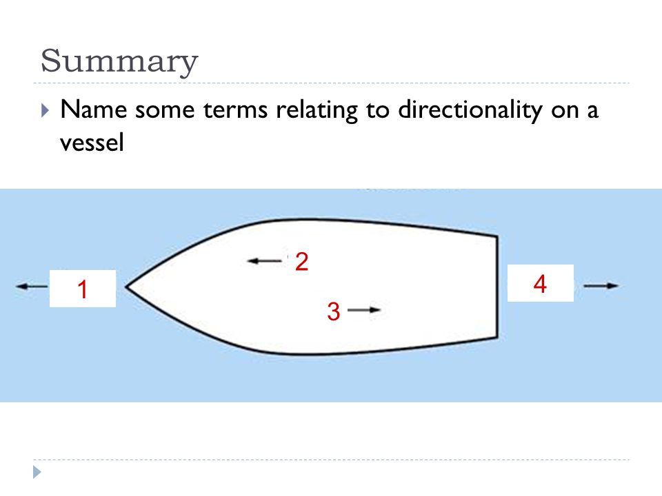 Summary Name some terms relating to directionality on a vessel 2 4 1 3