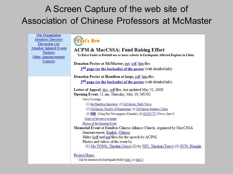A Screen Capture of the web site of