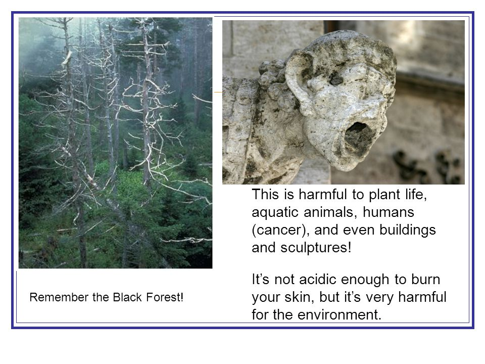 This is harmful to plant life, aquatic animals, humans (cancer), and even buildings and sculptures!