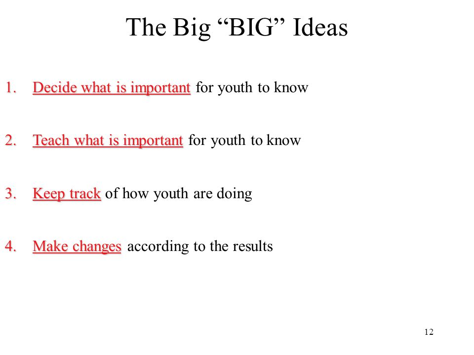 The Big BIG Ideas Decide what is important for youth to know