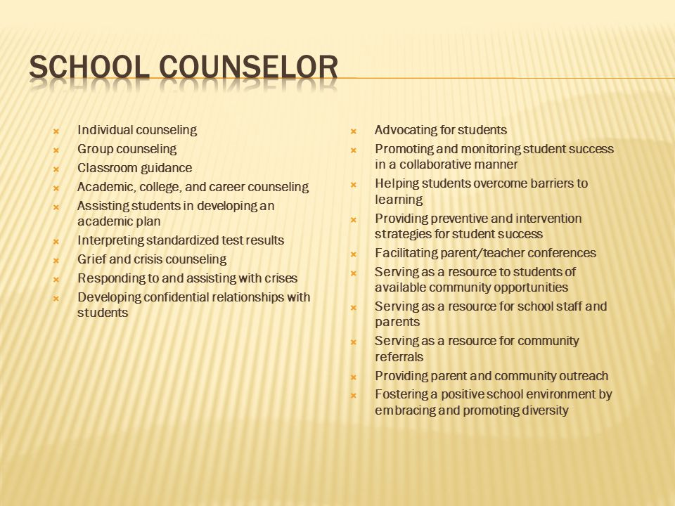 School Counselor Individual counseling Group counseling