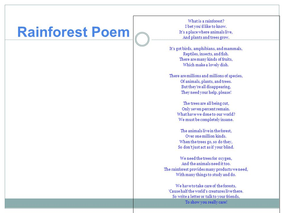 Rainforest Poem What is a rainforest I bet you d like to know.