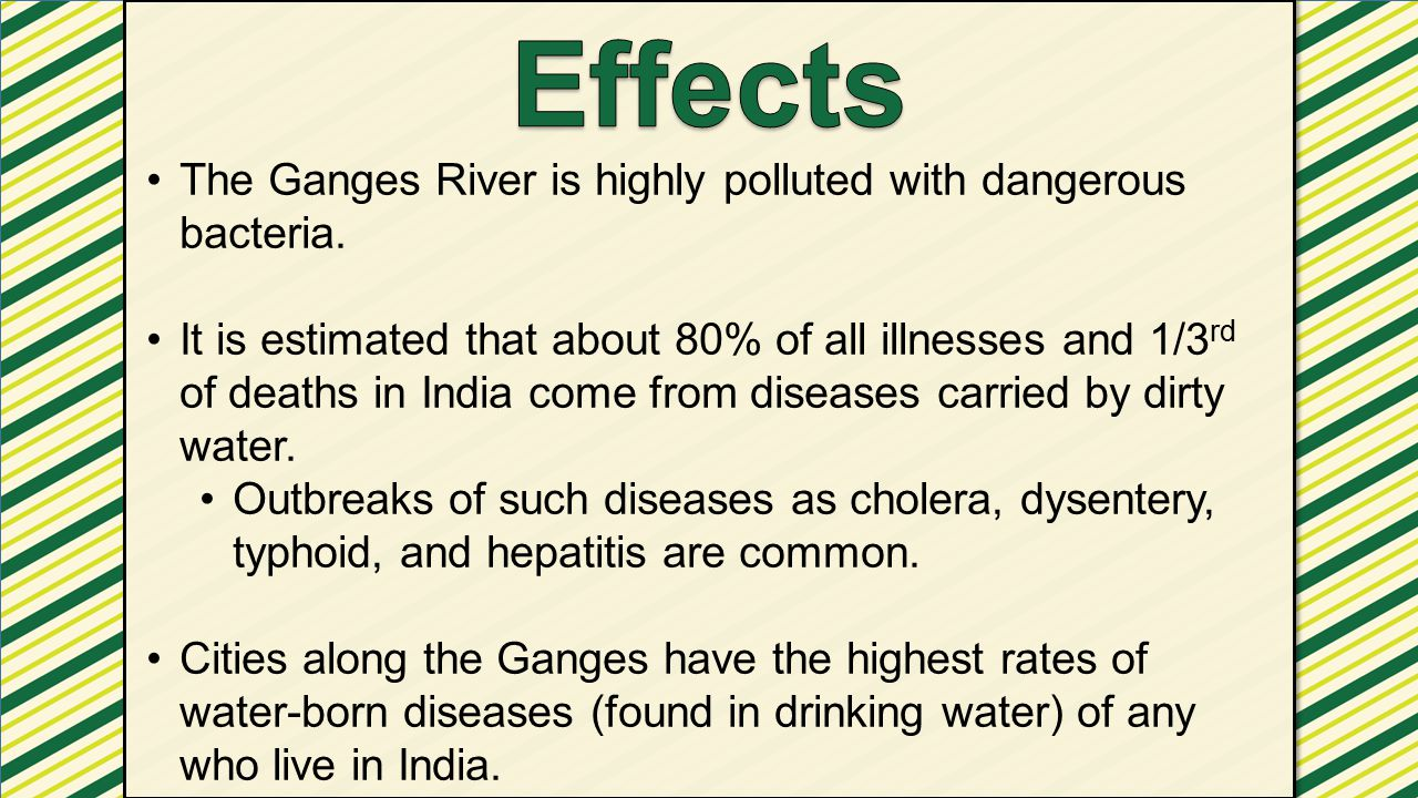 Effects The Ganges River is highly polluted with dangerous bacteria.