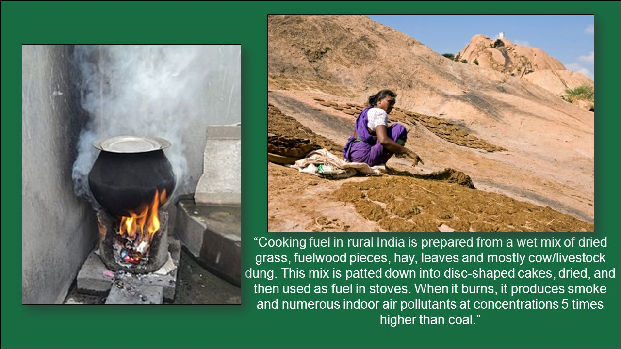 Cooking fuel in rural India is prepared from a wet mix of dried grass, fuelwood pieces, hay, leaves and mostly cow/livestock dung.