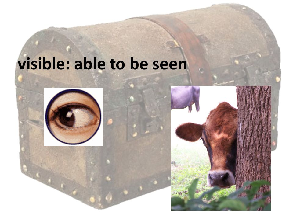 visible: able to be seen
