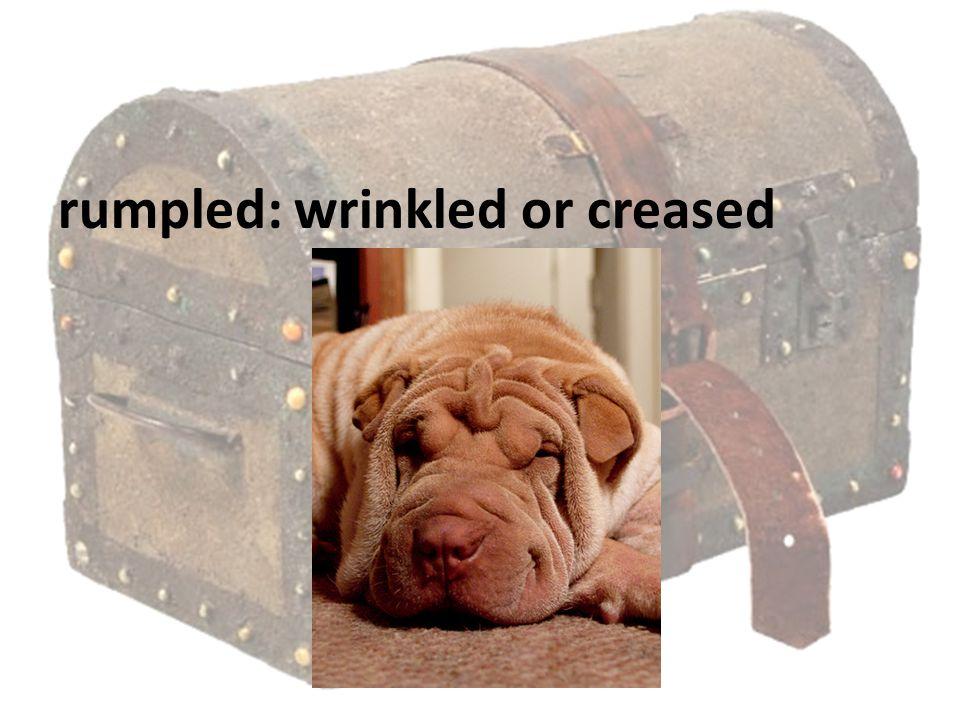 rumpled: wrinkled or creased