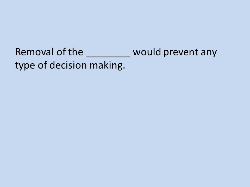 Removal of the ________ would prevent any type of decision making.