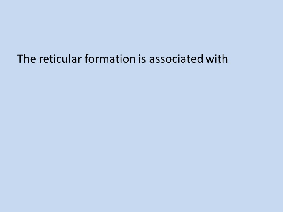The reticular formation is associated with