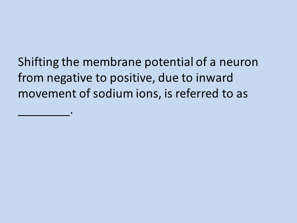 Shifting the membrane potential of a neuron from negative to positive, due to inward movement of sodium ions, is referred to as ________.
