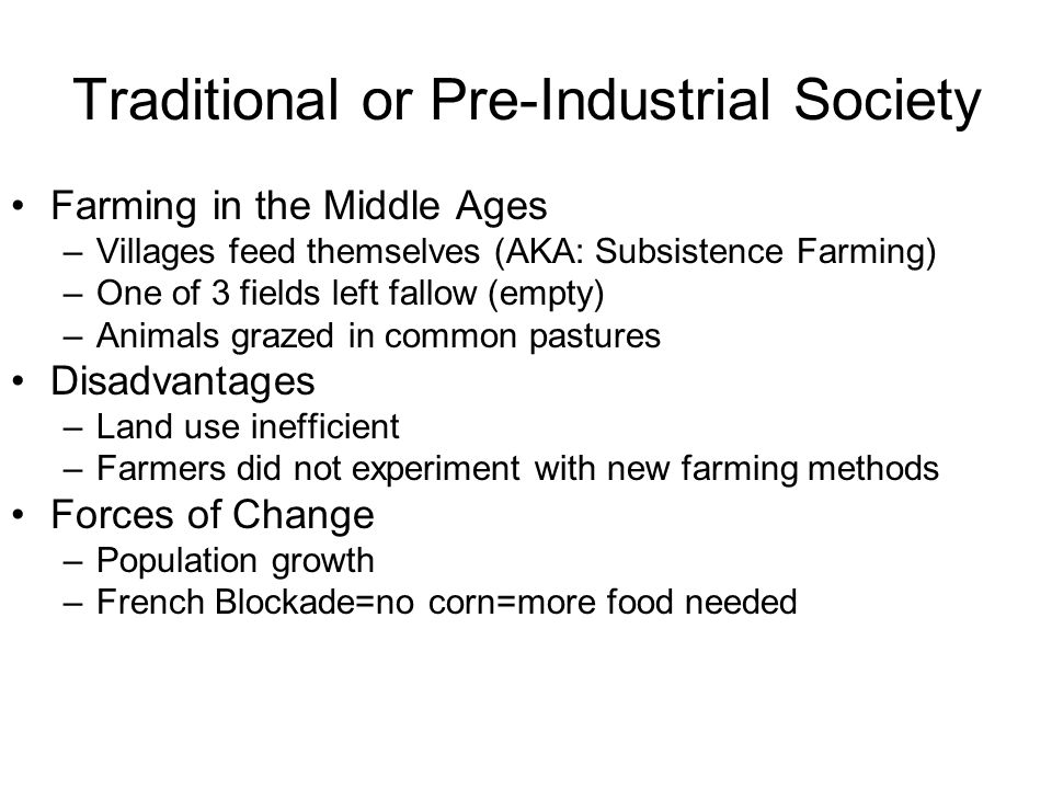 Traditional or Pre-Industrial Society
