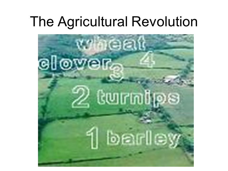 The Agricultural Revolution