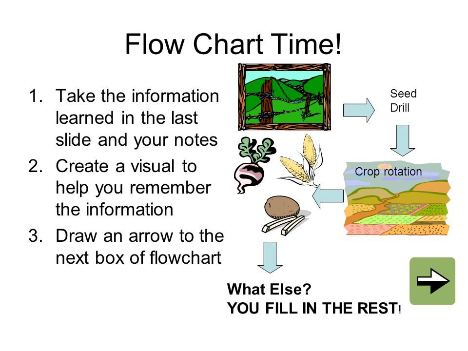 Flow Chart Time! Take the information learned in the last slide and your notes. Create a visual to help you remember the information.