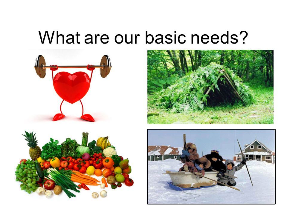 What are our basic needs