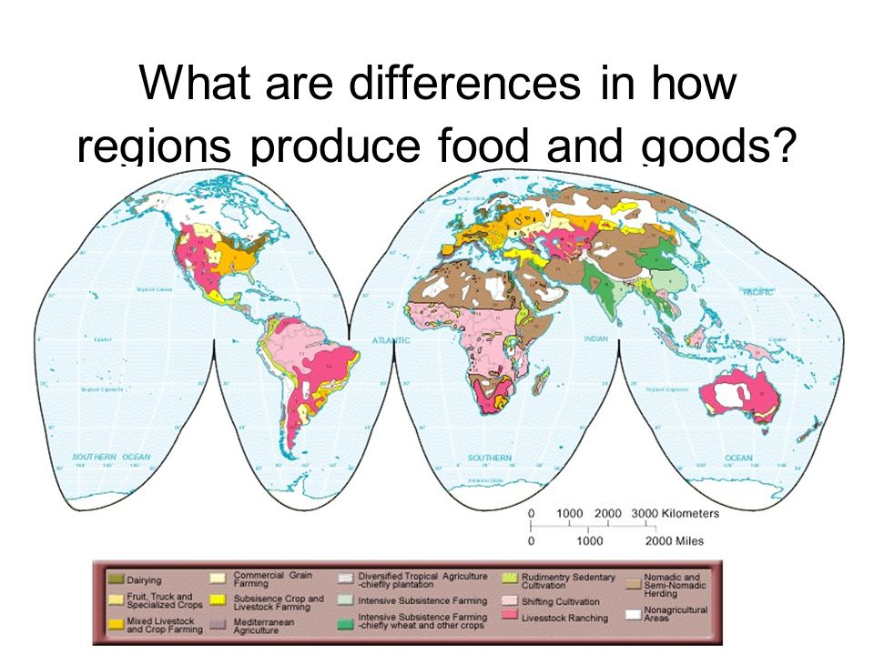 What are differences in how regions produce food and goods
