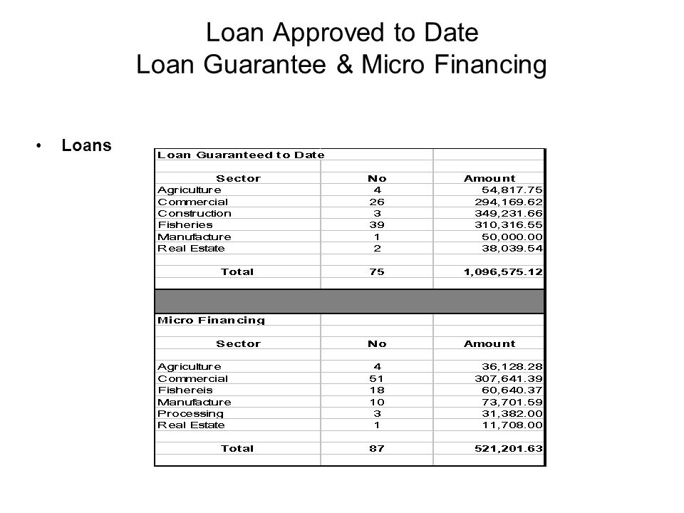 Loan Approved to Date Loan Guarantee & Micro Financing