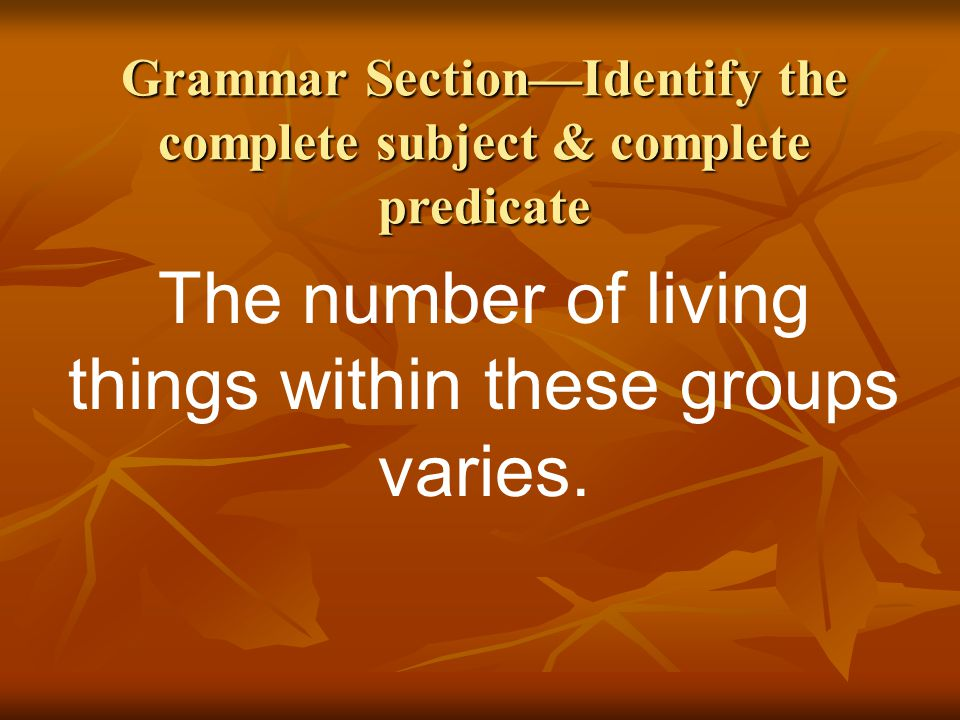 Grammar Section—Identify the complete subject & complete predicate
