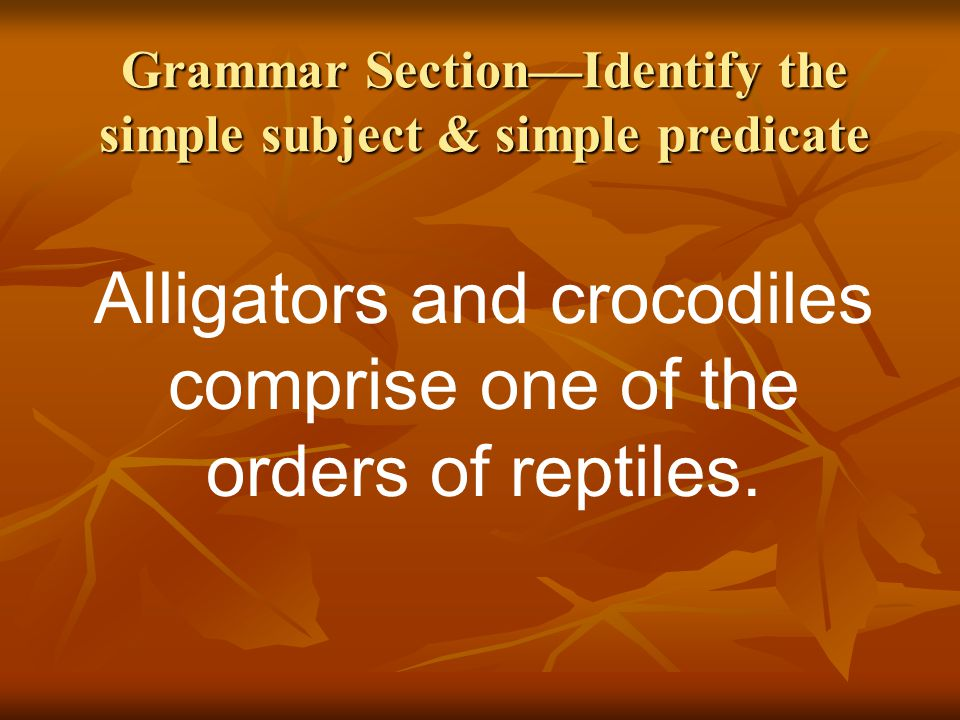Grammar Section—Identify the simple subject & simple predicate