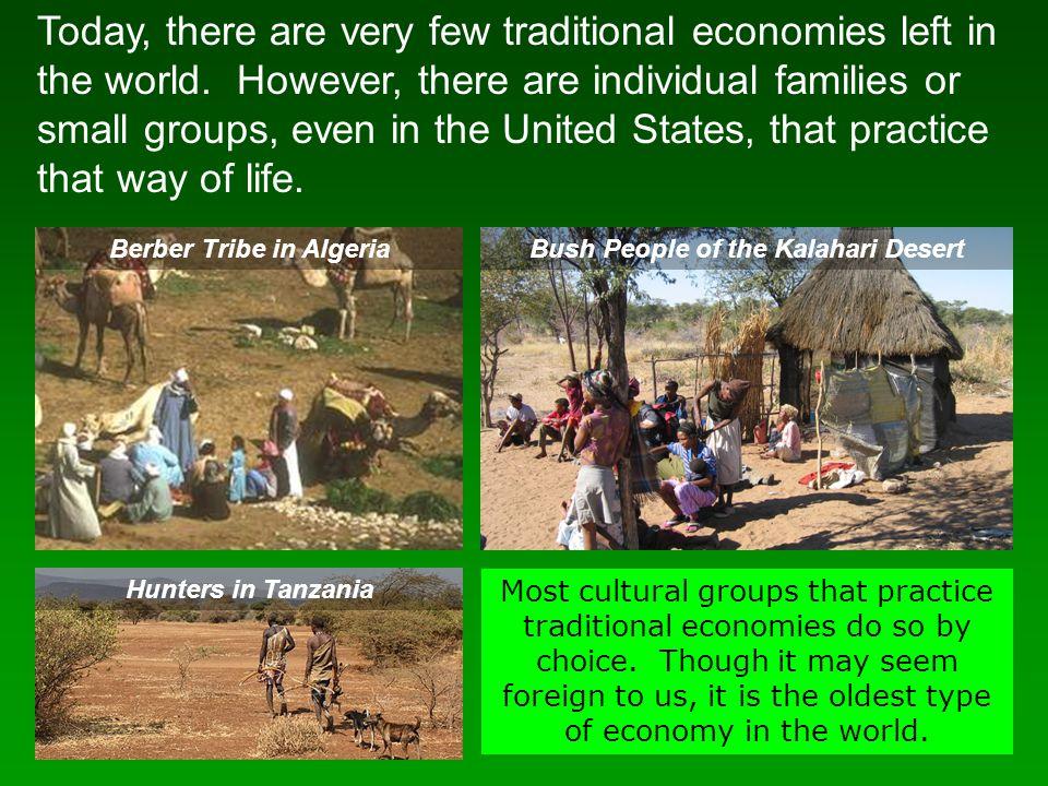 Berber Tribe in Algeria Bush People of the Kalahari Desert