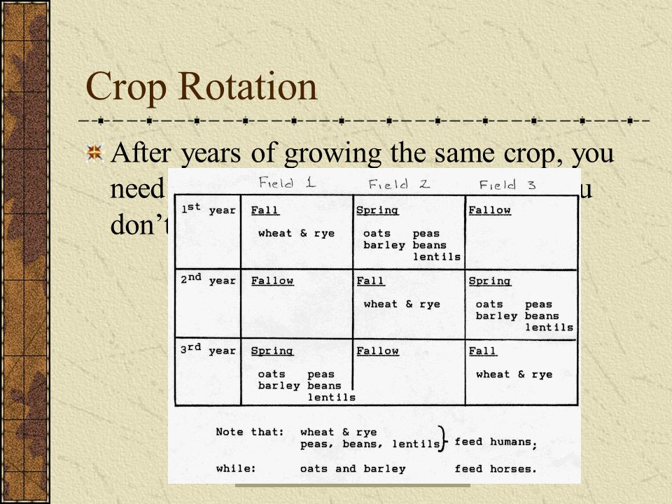 Crop Rotation After years of growing the same crop, you need to grow something different so you don't deplete the soil of nutrients.