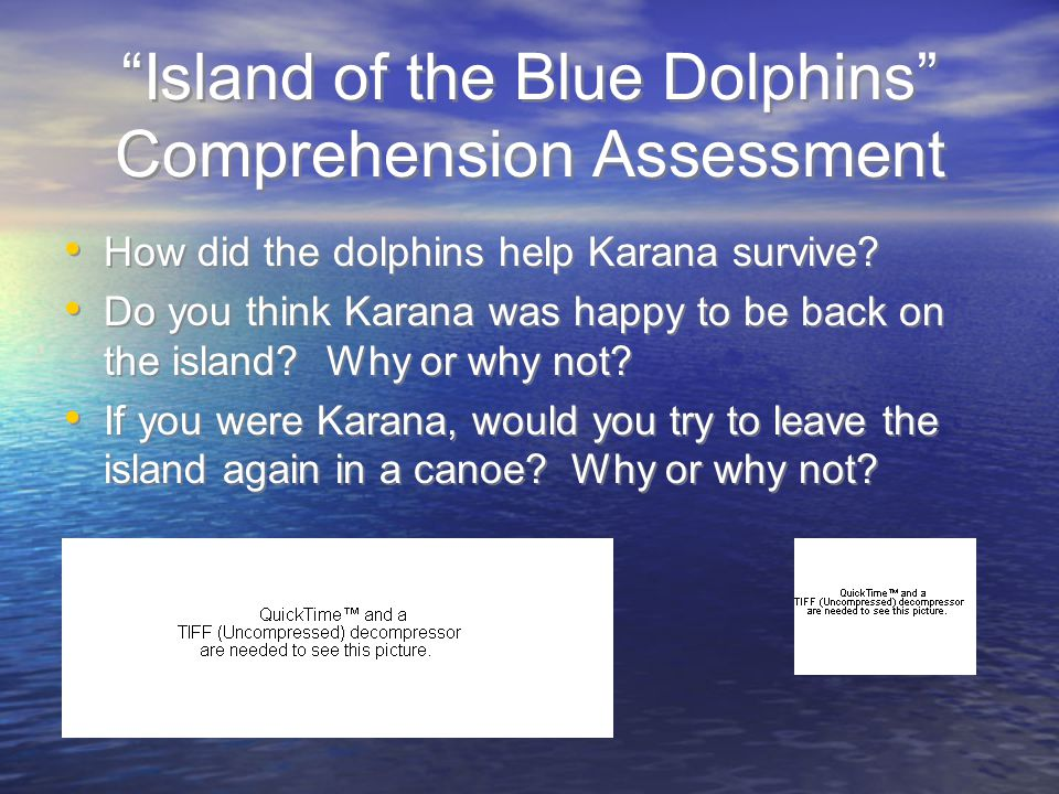 island of the blue dolphins essay karana island of the blue dolphins study com