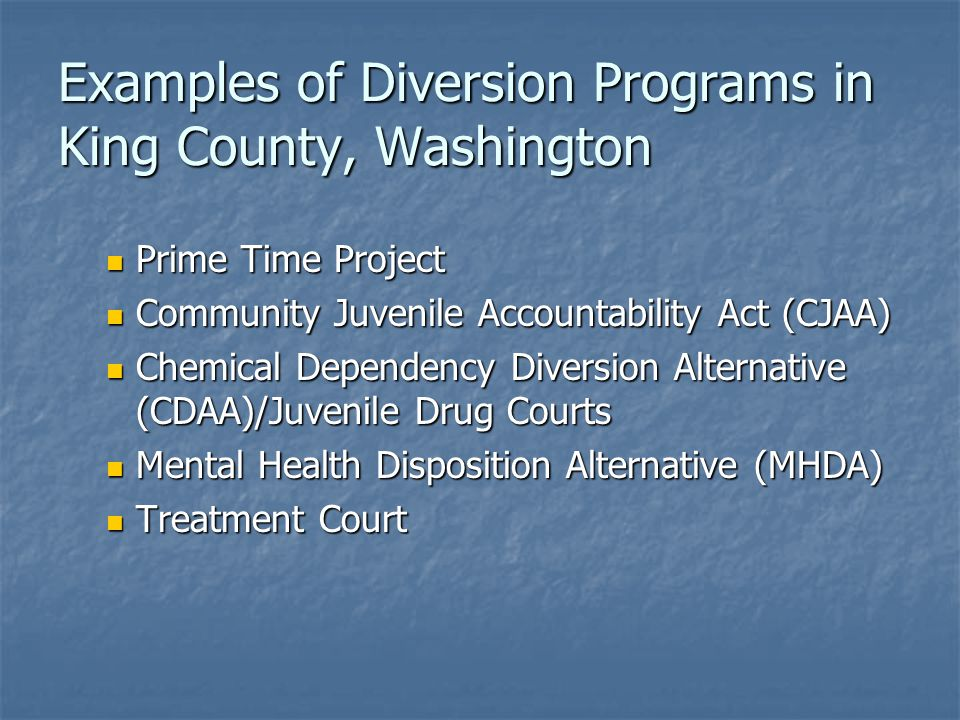 Examples of Diversion Programs in King County, Washington