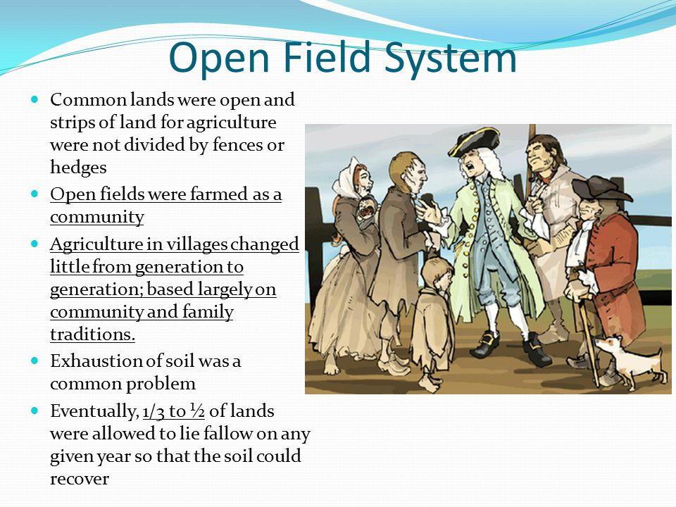 Open Field System Common lands were open and strips of land for agriculture were not divided by fences or hedges.