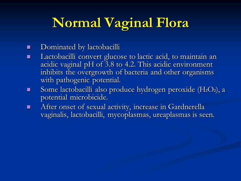 Normal Vaginal Flora Dominated by lactobacilli