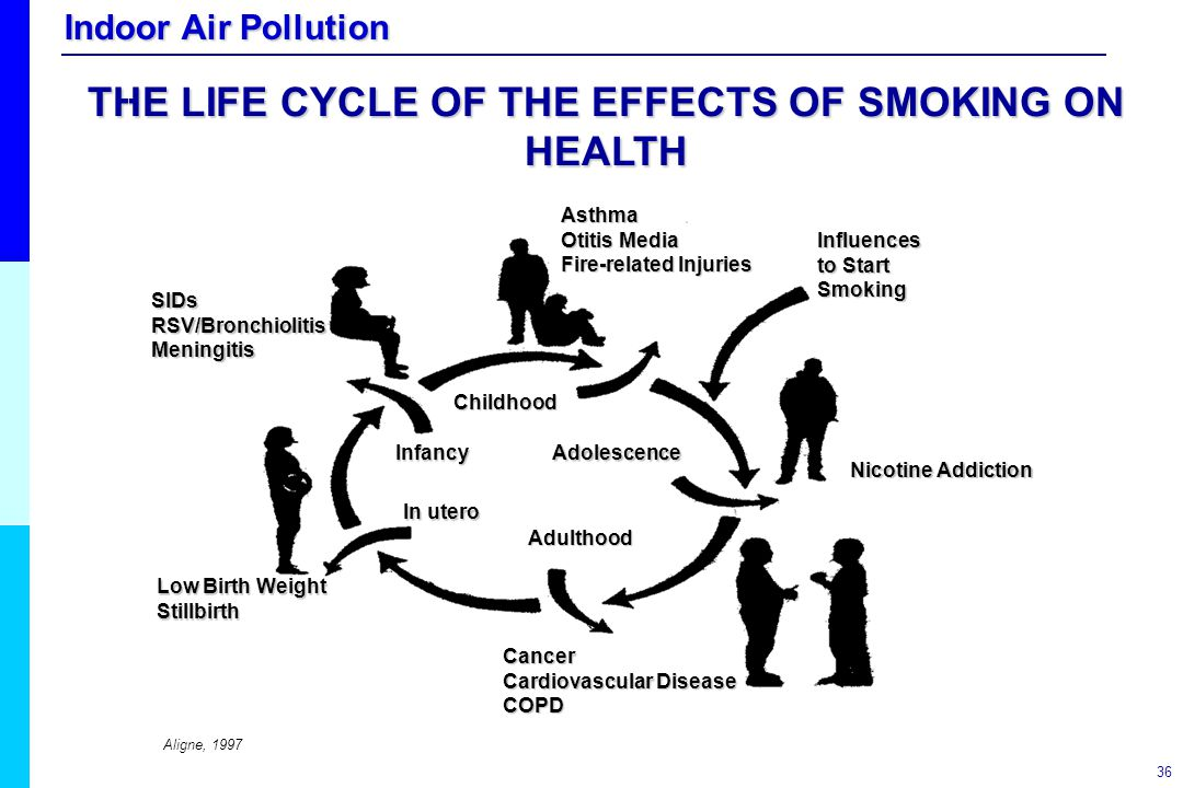 THE LIFE CYCLE OF THE EFFECTS OF SMOKING ON HEALTH