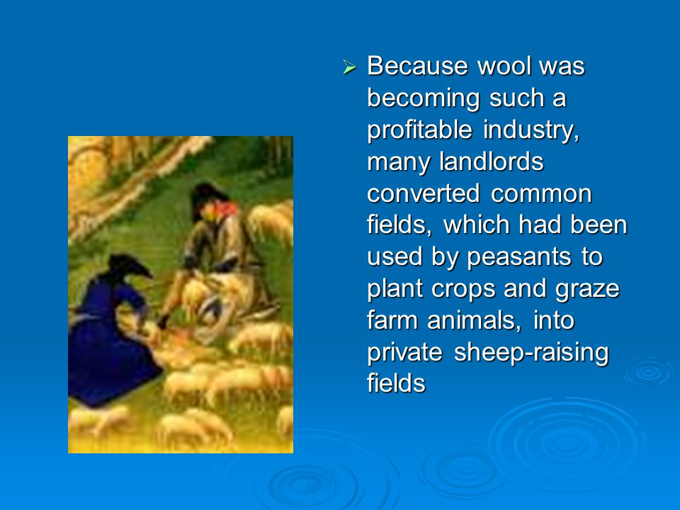 Because wool was becoming such a profitable industry, many landlords converted common fields, which had been used by peasants to plant crops and graze farm animals, into private sheep-raising fields