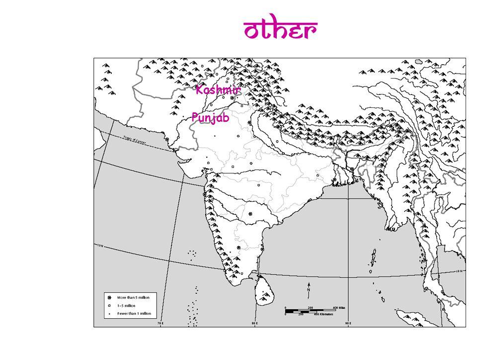 Other Kashmir Punjab