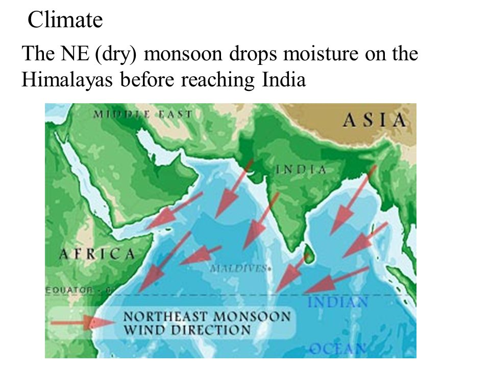 Climate The NE (dry) monsoon drops moisture on the Himalayas before reaching India