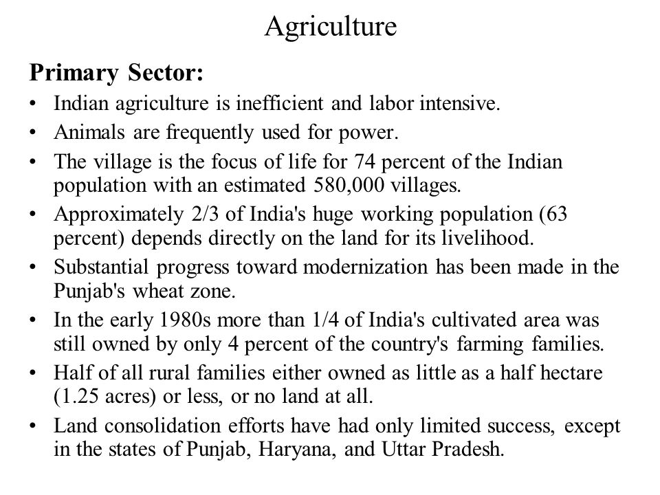 Agriculture Primary Sector:
