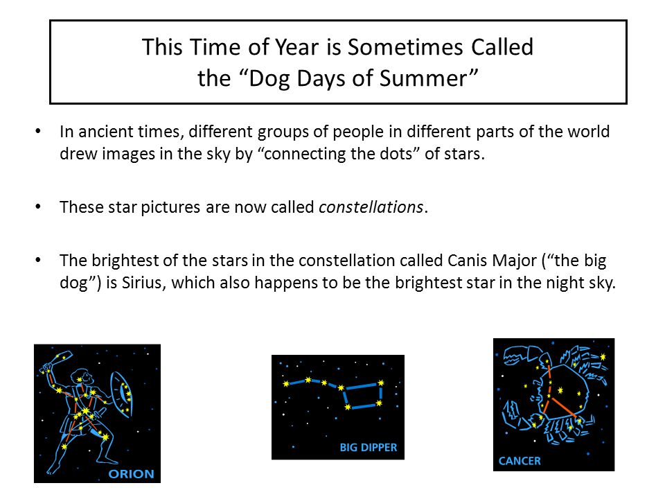 This Time of Year is Sometimes Called the Dog Days of Summer