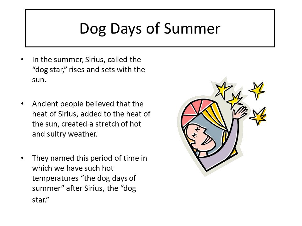 Dog Days of Summer In the summer, Sirius, called the dog star, rises and sets with the sun.