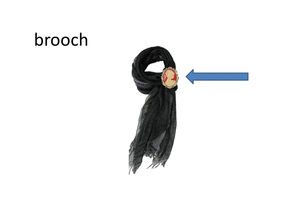 brooch brooch Items mentioned in Chapter 2 (what Mae wears)