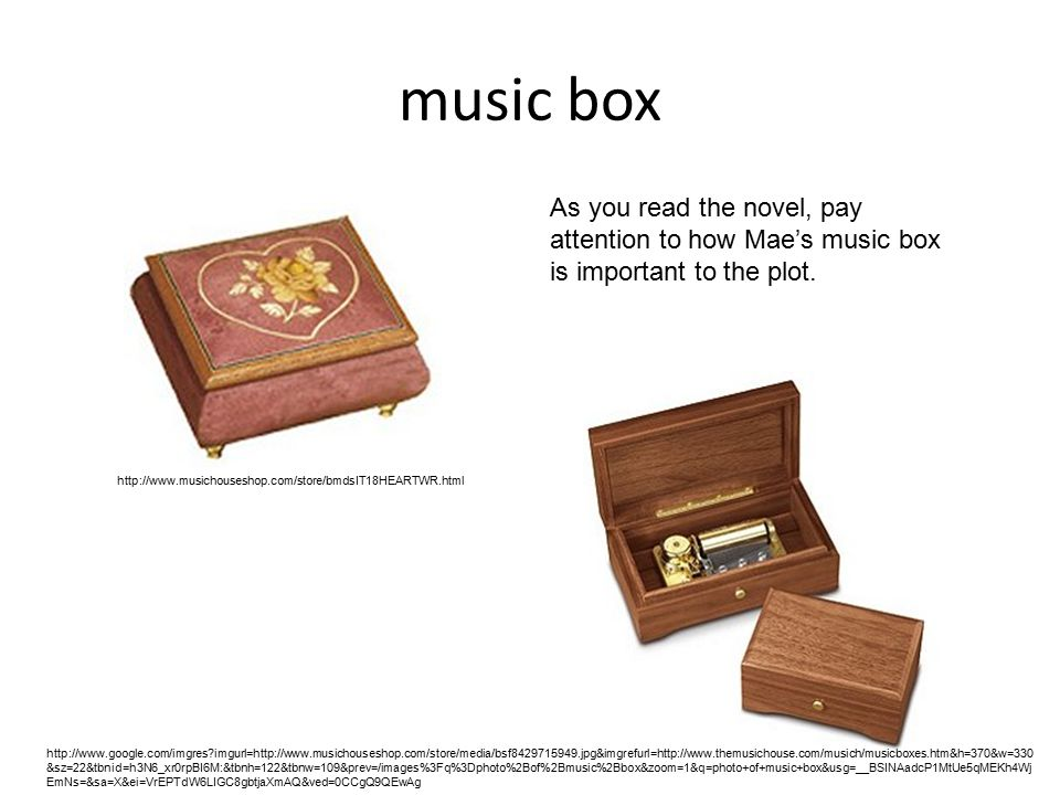 music box As you read the novel, pay attention to how Mae's music box is important to the plot.